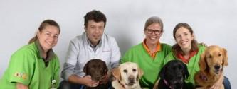 perros_hospital
